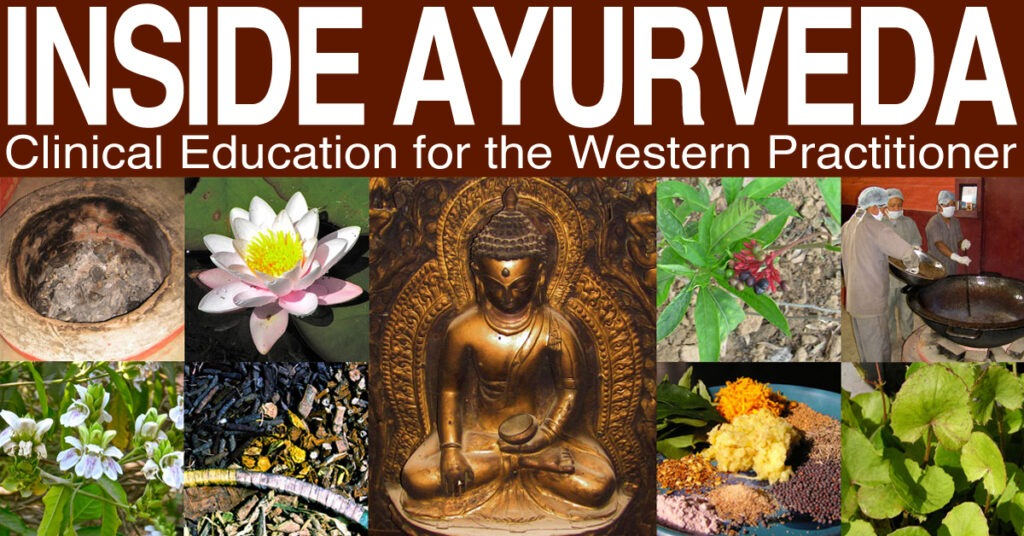 Ayurveda Course: Yoga Teacher Trainers and Trainees