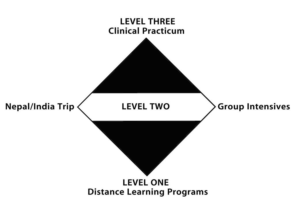 DSBM-flow-chart