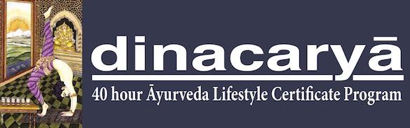 New Ayurveda Lifestyle Program!
