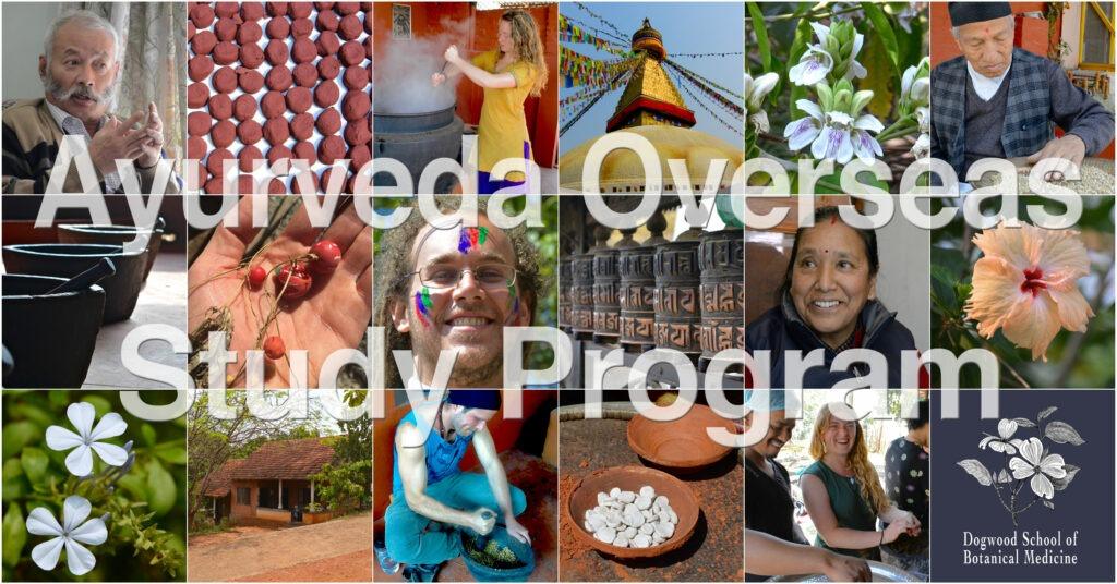 Level I Ayurvedic Wellness Counselor Certification Program ...