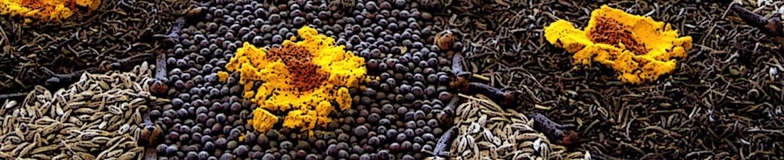 foodasmedicine_herbs