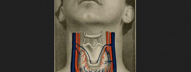 Understanding thyroid issues